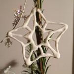 Etoile en dentelle de porcelaine. Brigitte Morel