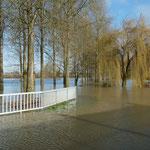 inondation de la route vers Peyrehorade