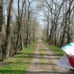 voie verte de Dax à Montfort