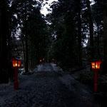 箱根神社の参道1