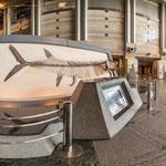 神奈川県立生命の星・地球博物館エントランス
