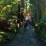 箱根神社の石段