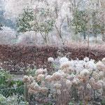Ook hagen zijn mooie winterverblijven voor dieren