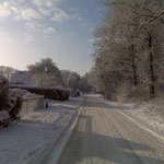 De natuur is ook in de winter mooi Bij Truus