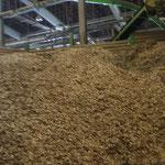 製紙・灌漑用木質チップ