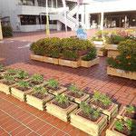 緑化用プランターボックス(池田町)