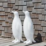 Les pingouins sont de sorties cette année, invité les dans votre jardin
