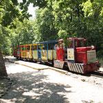 Die Mecsek-Waldbahn