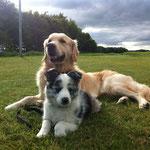 Murphy und Spitfire