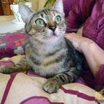 Cloe - kleine übersehene Maus im Glück :-)
