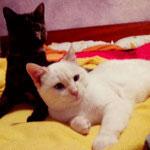 Lia und Lukas