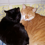 Baghira und Oskar
