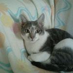 Billy - er ist der neue Kumpel vom kleinen Felix :-)