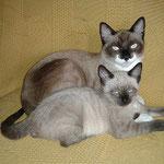 Micky & Luna durften zusammen bleiben