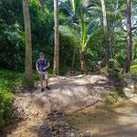 Durch den Regenwald zum Banana Beach