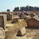 Bubastis: Nur ein ausgedehntes Ruinenfeld ist übrig geblieben, von der Residenz  der 22. Dynastie.