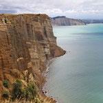 Spektakuläre Klippen an der Ostküste Neuseelands nahe Naipier. (Im Süden der Nordinsel)