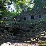 Die Ruinen von Palenque liegen im Dschungel.