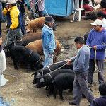 Auf dem Markt in Otavalo.