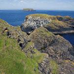 Fels-Küste im Nord-Osten von Irland.