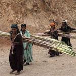 Frauen schleppen Zuckerrohr. Solch ein Bündel wiegt ca. 60 kg.