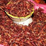 Auf dem Markt von Oaxaca: Heuschrecken geröstet und eingelegt in Chili.