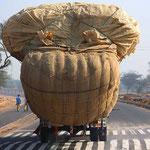 Leicht überladen! Auf der Autobahn von Jaipur nach Agra.