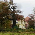 Schlosspark / Gross Pankow / Prignitz