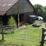 Paddock in Steinrinnen