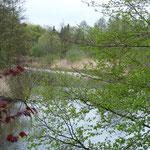 Am Ufer der Berkel