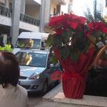 Per offrire alla Madonna i fiori.
