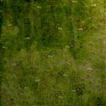 119. finanza / finance 2007 (cm 50x50) private collection
