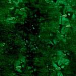 116. alghe / algae 2007 (cm 50x50) private collection
