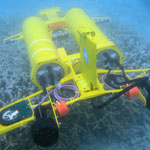A new AUV called a Starbug, developed by CSIRO to monitor the Great Barrier Reef. Image from CSIRO CCBY>