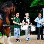 ... die Pferde werden für eine Showveranstaltung an die Musik gewöhnt.