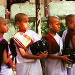 Novizen Mönche / Myanmar