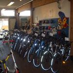E-Bikes mit Bosh-Xion-Impulse und Ansmann Motoren.