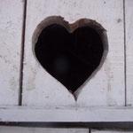 Anne Oberhauser Poggi (Le coeur a ses raisons...).