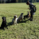Ayana, Raya, Myla, Chelsea und Giorgi