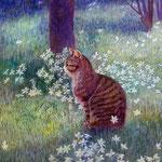 日向ぼっこ(猫)W24.2×H33.3