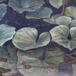 神聖(蓮の花) W18 x H14