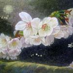 月光深く(桜)W33.3×H24.2