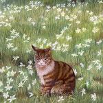 日向ぼっこ(ニラバナと猫)W18.0 ×H14.0