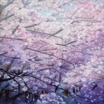 爛漫(桜) W33.3 x H24.2