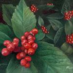 赤い実はじけた(千両)W18.0×H14.0