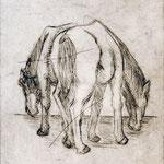 Zwei Pferde, 2016, Kaltnadelradierung, 20x14 cm