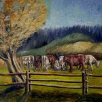 Kühe, 2020, Öl auf Leinwand, 60x80cm