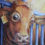 Vieh Haltung, 2021, Öl auf Leinwand, 70x60cm