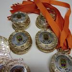 9. Medaillen mit Sublimationsdruck-Plakette