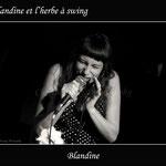 Concert au Comptoir du jazz - Photo:© Christelle Bouquey